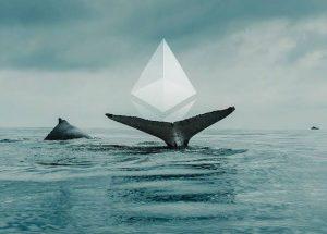 Počet ETH velryb na vzestupu