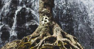 Nyní se hlasuje o implementaci nejambicióznějším upgradu Bitcoinu po letech - Taproot